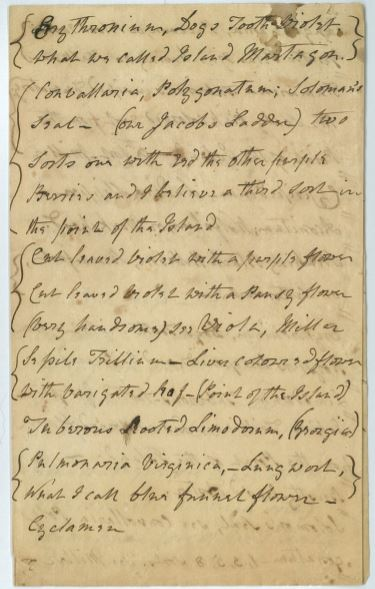 Loose-leaf list, from the papers of Lady Jean Skipwith