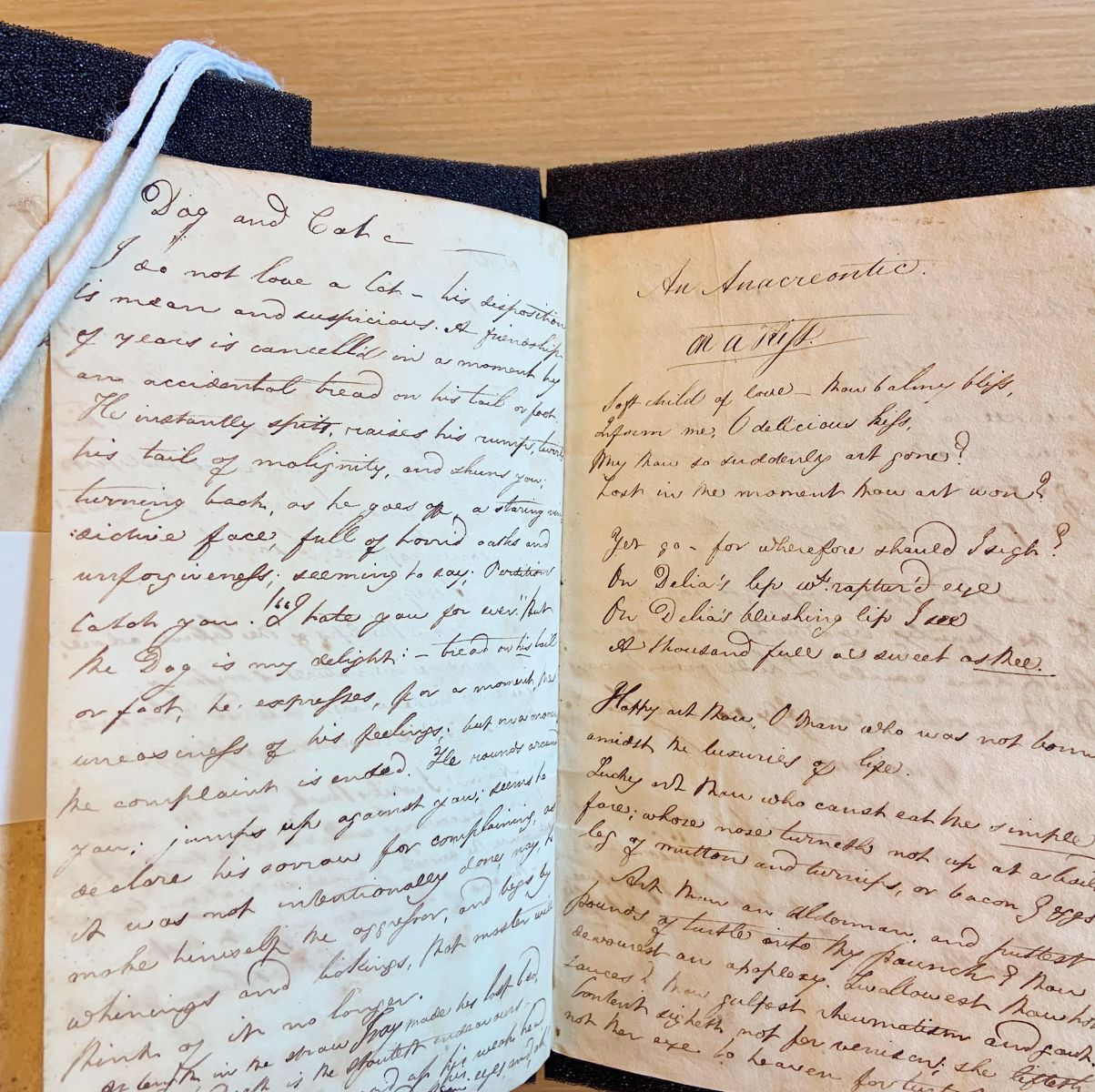 "Page spread from student's commonplace book, featuring ""Dog and Cat,"" and the accompanying handwritten text that is transcribed in the blog post."