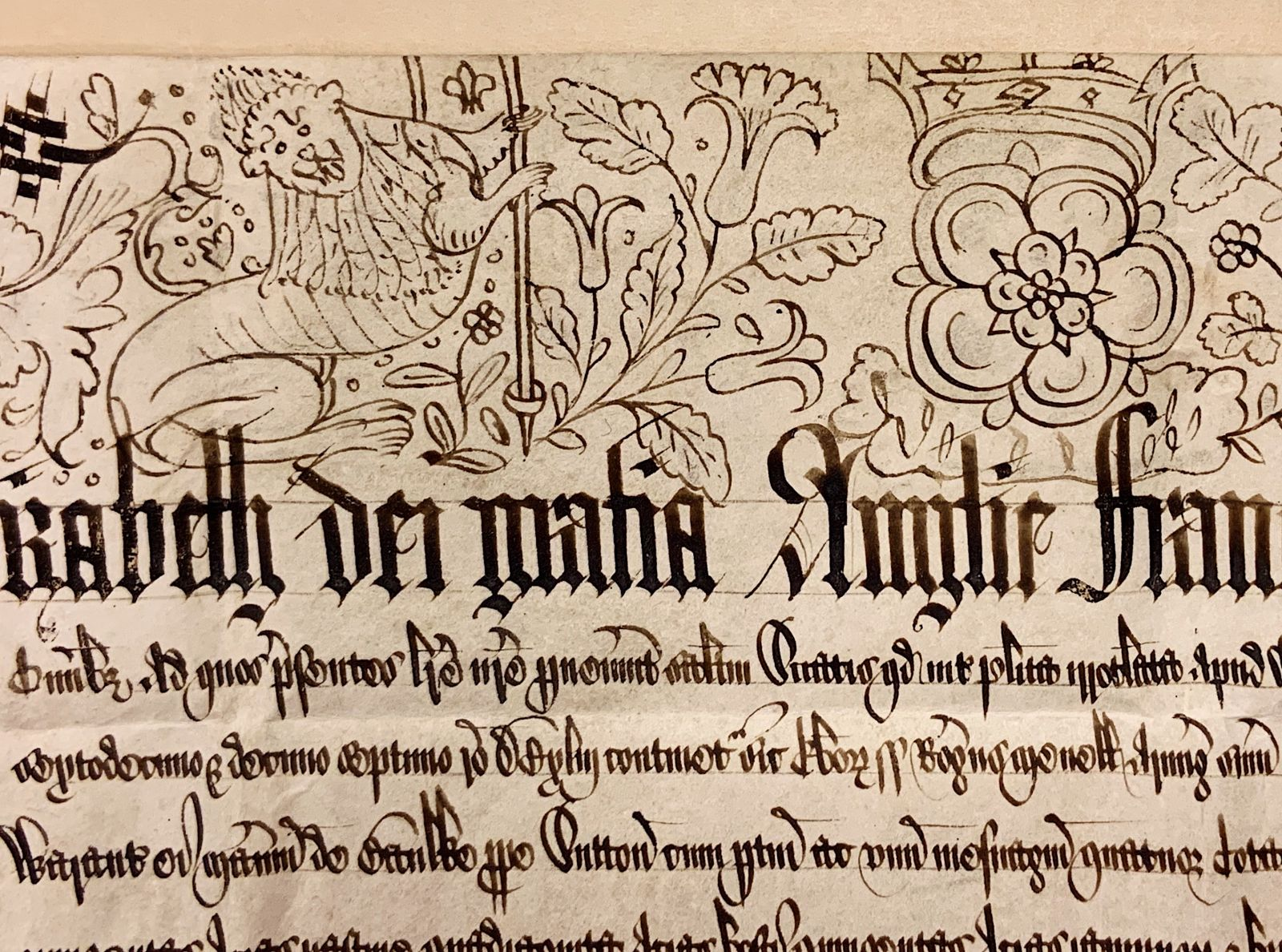 A close-up of the manuscript document's upper margin, which includes several hand-drawn illustrations. This image shows a lion, meant to represent King Henry VIII, with its paws grasping at a rod or scepter of some kind. To the left of the lion is a Tudor rose. Beneath these illustrations, the text of the document begins. The first line features text in large, bold calligraphy, with every succeeding line in smaller calligraphy. All text written in Latin.