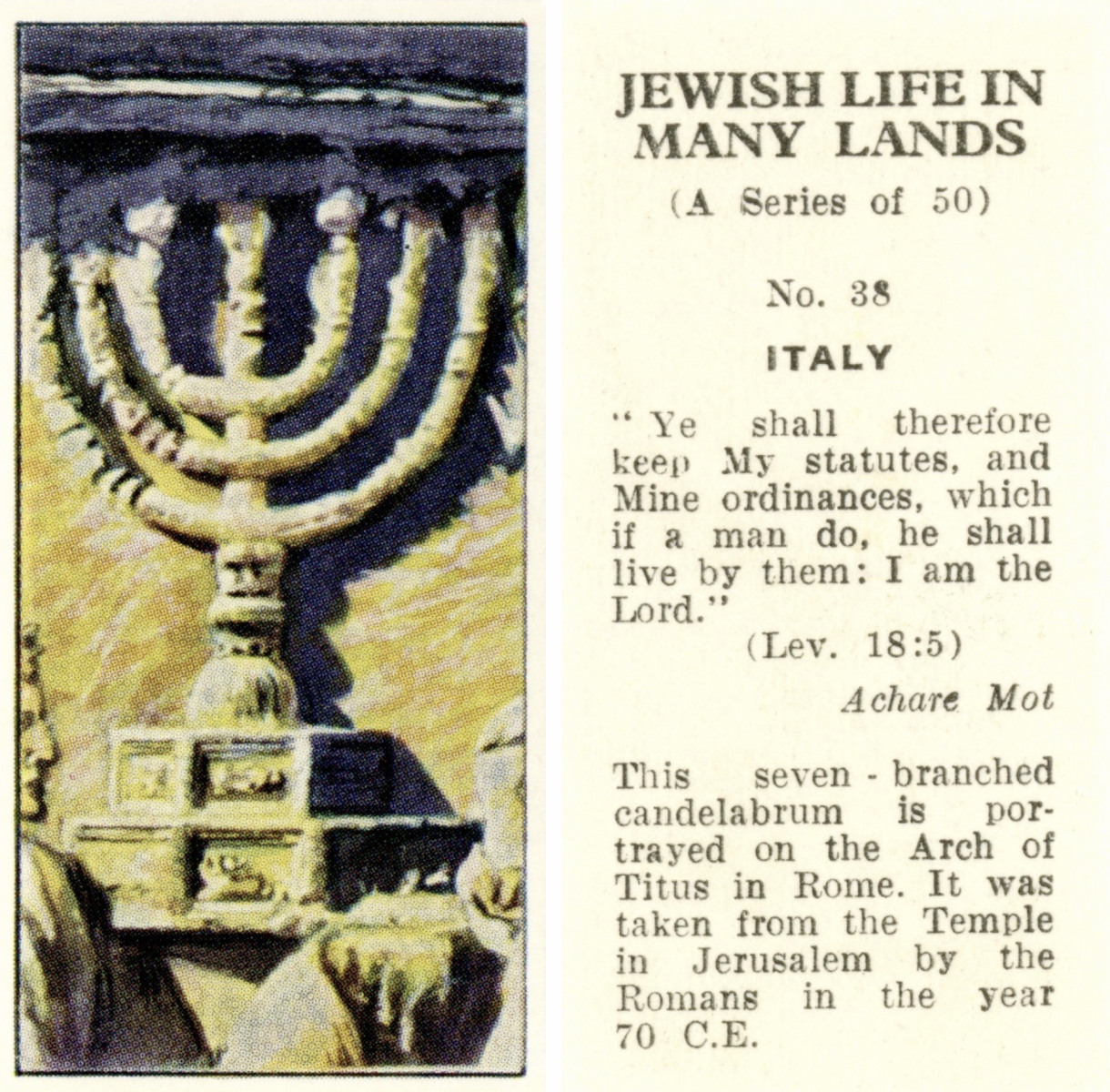 Obverse: large 7-branched menorah. Reverse: Text reveals this is card number 38 out of 50 and that the menorah is in Rome, where it was taken to by the Romans after being stolen from Jerusalem. Lev. 18:5 is quoted.