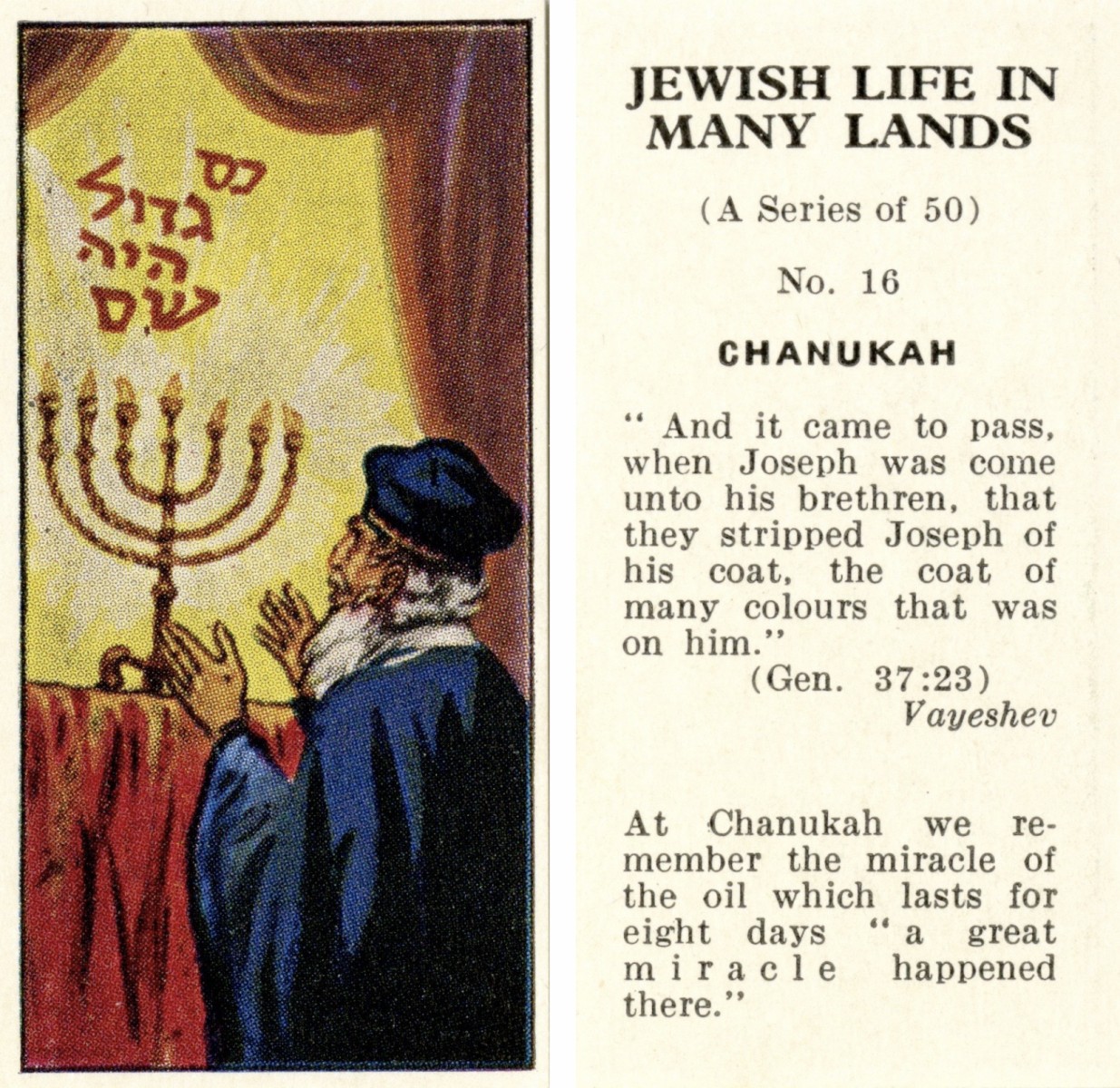 Obverse: color illustration of a person standing in front of a fully-lit 7-branched menorah. Hebrew script is written above the menorah. Reverse: Text reveals this is card number 16 out of 50. Genesis 37:23 is quoted.