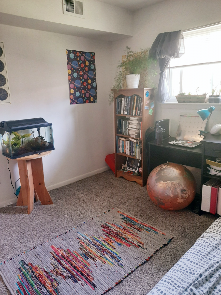 a sunny room with a fish tank and a colorful rug